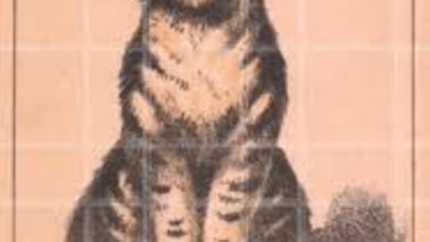 canarycat