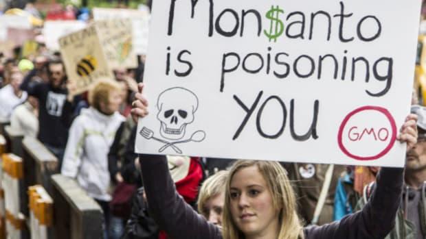 June-2013-Monsanto-1-e1369973208369-582