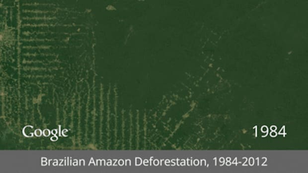 /Brazilian_Amazon_Deforestation-thumb-650x364-120978.gif