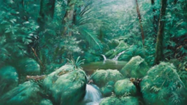 Rainforest-as