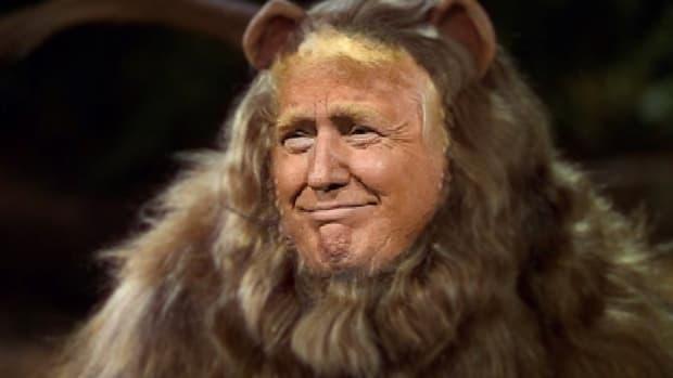 donald trump coward