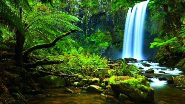 Amazon-Rainforest-Waterfalls.jpg