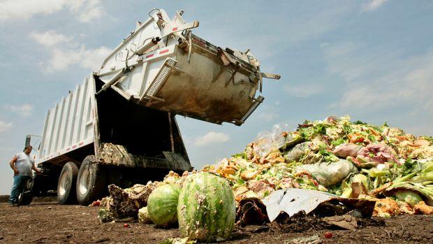 food-waste_opt.jpg