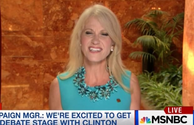 Deplorable: Turns Out Trump Campaign Manager Kellyanne Conway Called Americans 'A Bunch of Pigs'