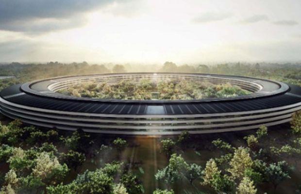 apple palace
