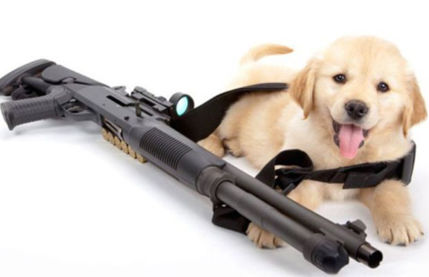 Cody with a Benelli M4
