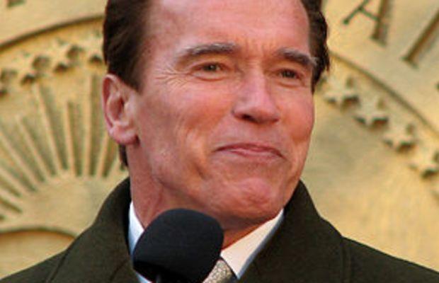 Arnold Schwarzenegger speaking at the lighting...