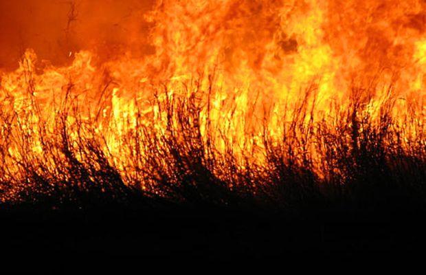 Fire by smaz93.
