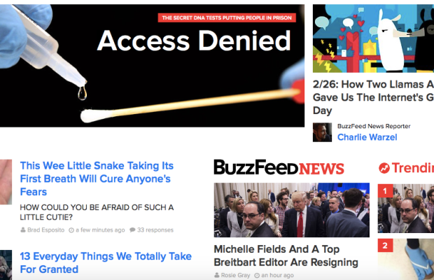 Screenshot / Buzzfeed