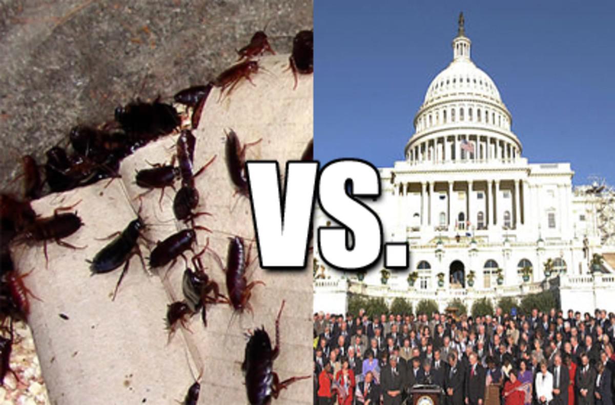 congress_poll_cockroaches