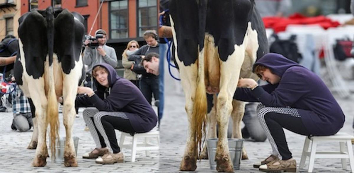 lena dunham cow