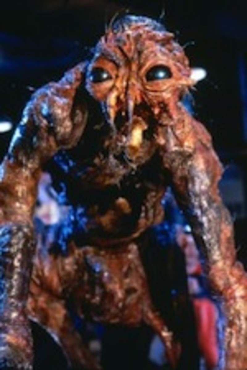 the fly 4