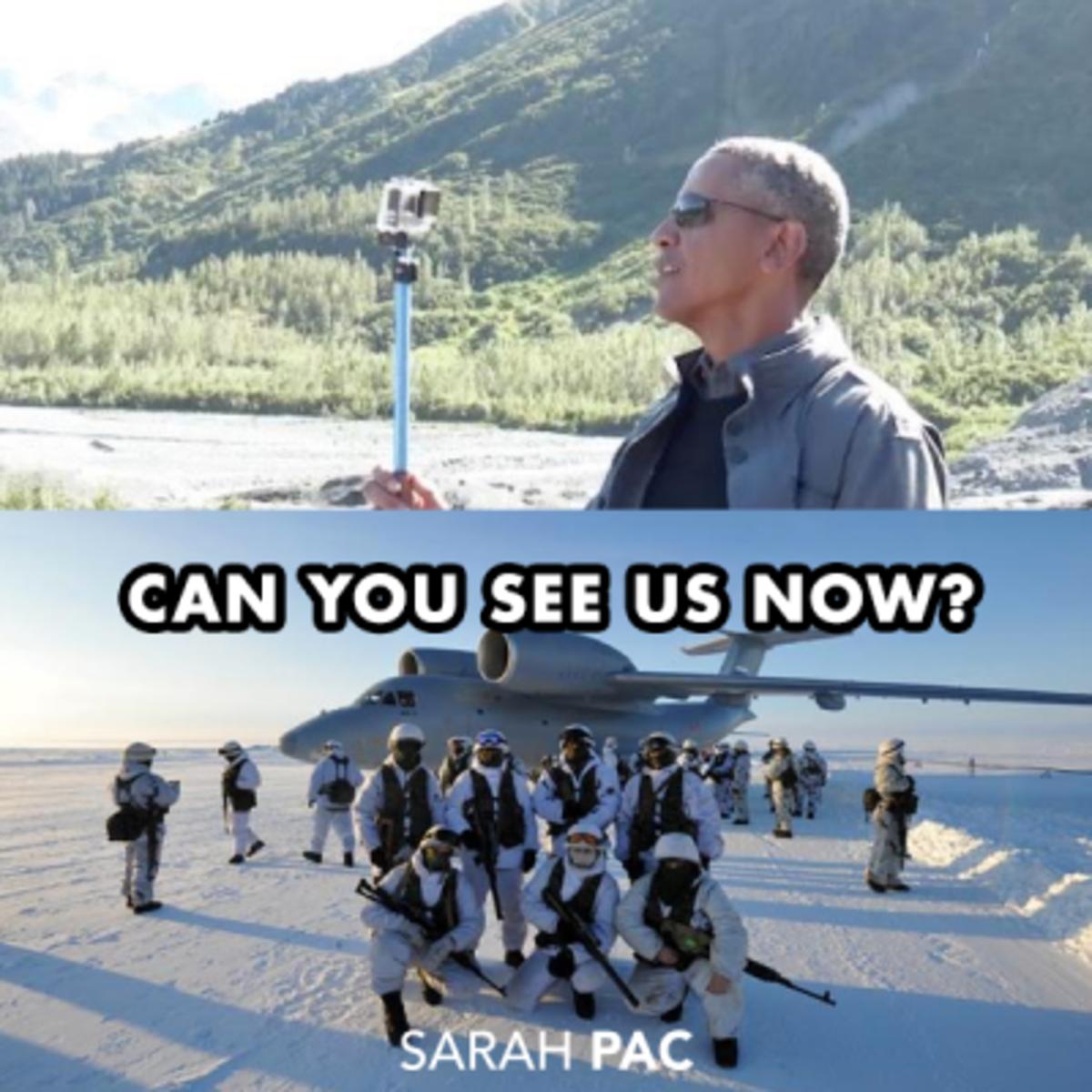 palin obama stick