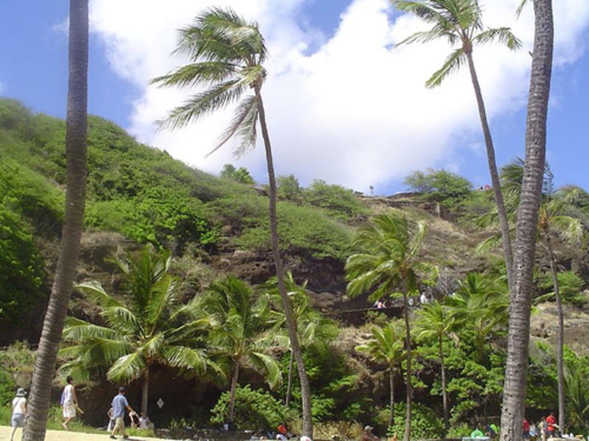 hawaii2006day1_3 023