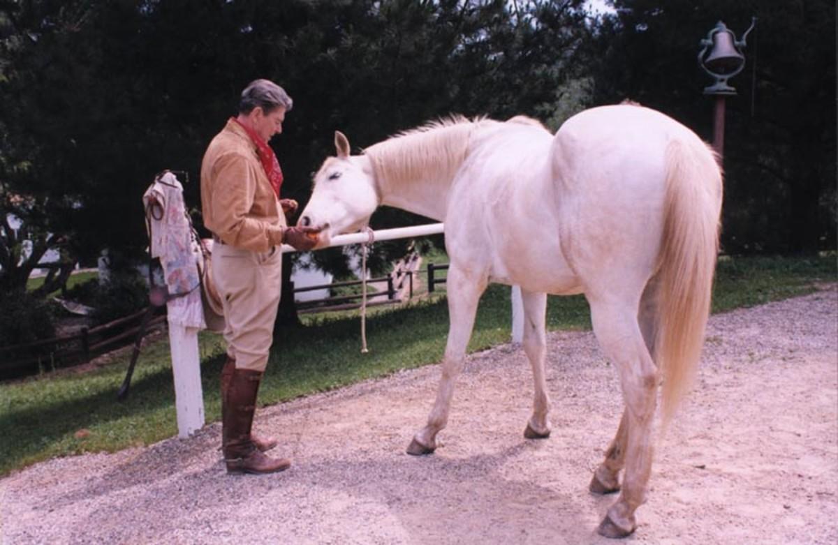 reagan_horse4486