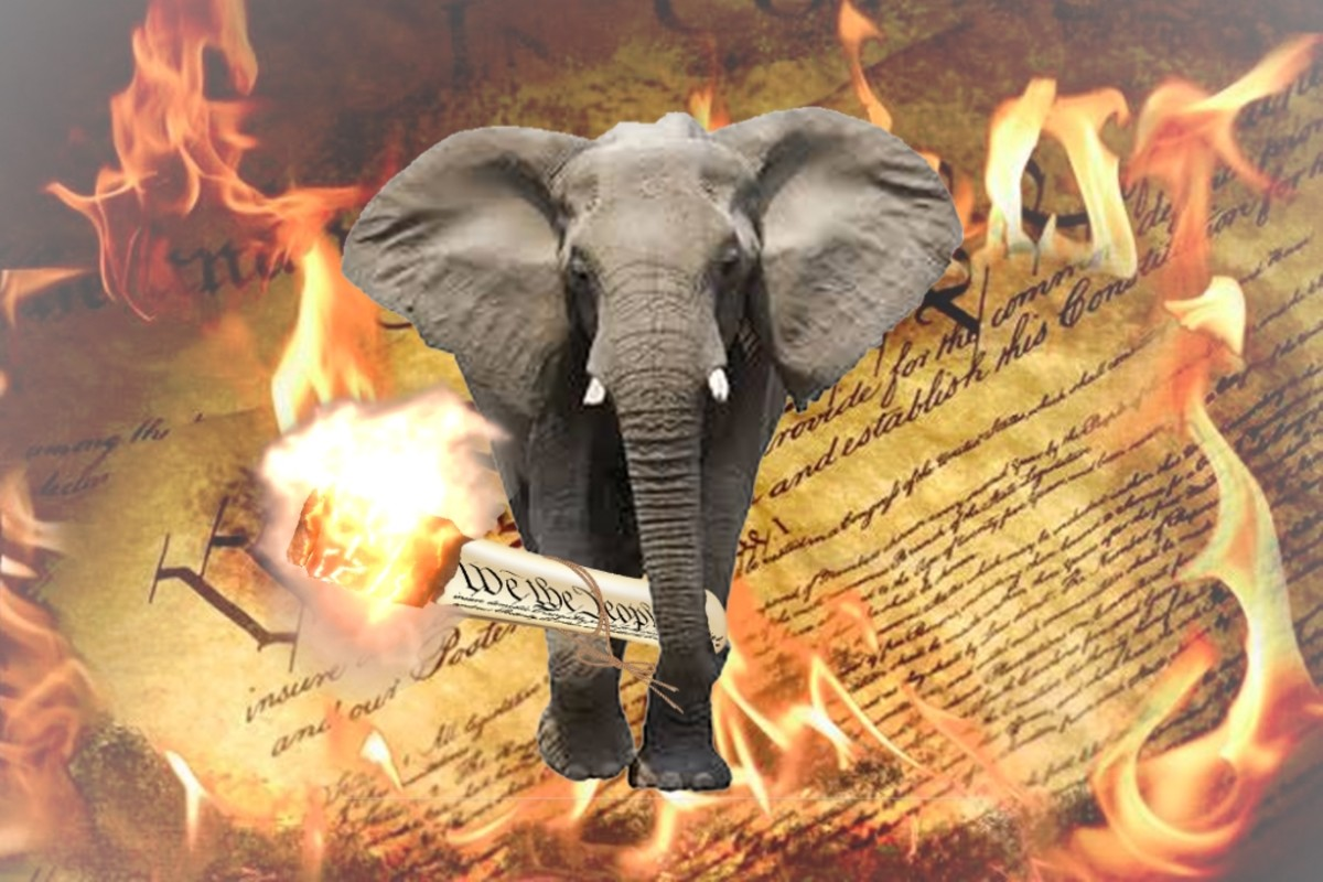 elephant-burning-constitution