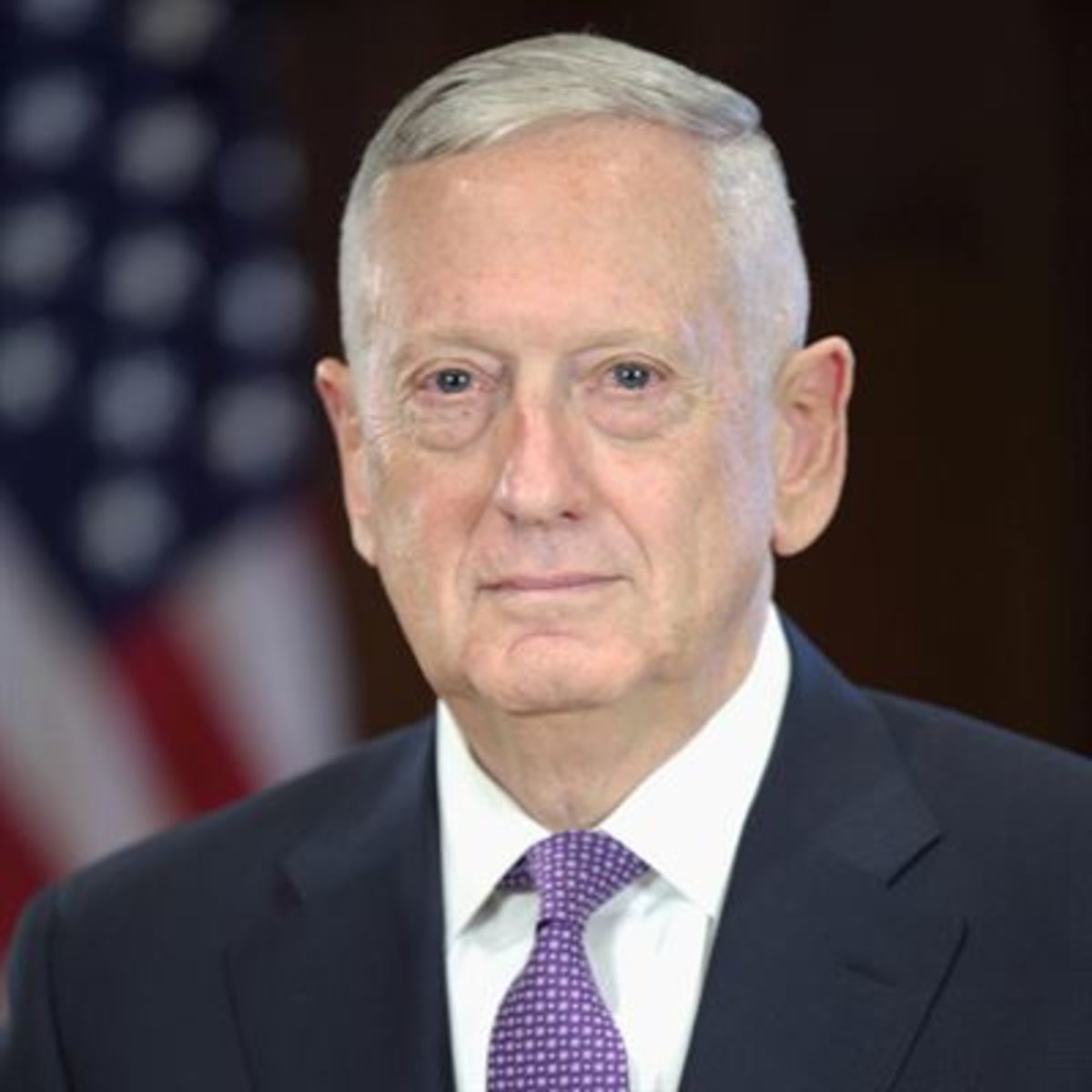 "Current US Secretary of Defense James Mattis aka ""The One Who Hasn't Made A Complete Ass of Himself Yet. You're Thinking of John Kelly."""
